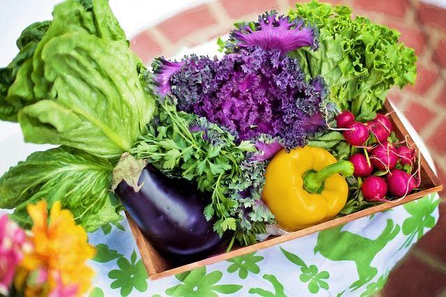 野菜で老化防止