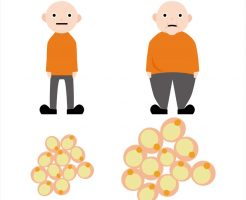 太るメカニズムを徹底解明