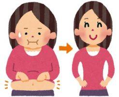 腸内環境を改善する効果