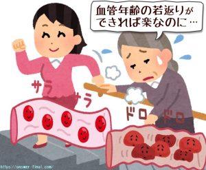 血管年齢を下げる方法