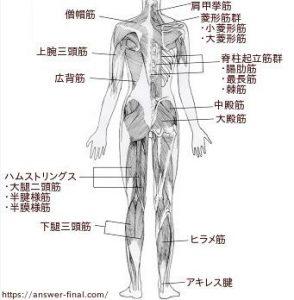 朝起きると腰が痛い病気?睡眠時の対処法を腰痛症状の場所と原因別!