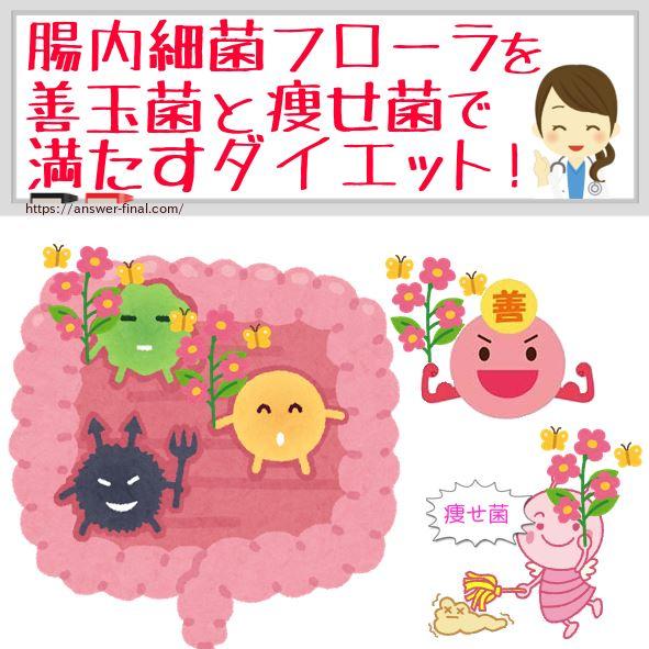 腸内細菌フローラで数を増やすダイエットの種類