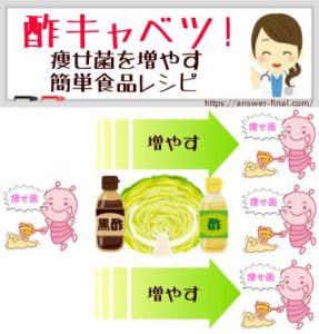 痩せ菌を増やす食材