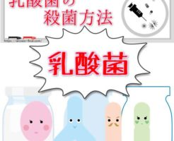 乳酸菌の殺菌方法