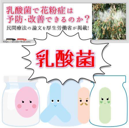 乳酸菌と花粉症