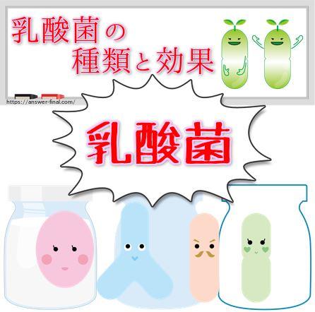 乳酸菌の種類と効果