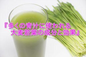 大麦若葉と青汁